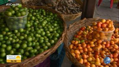 Saiba como estão os preços das frutas da estação na Ceasa do Ogunjá - Umbu, siriguela, pinha, tangerina, são alguns dos produtos que vêm do norte da Bahia para abastecer todo o estado.