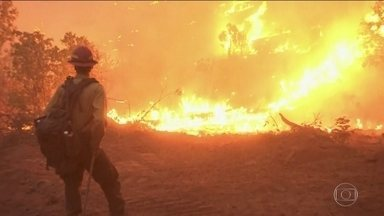 Cerca de mil pessoas estão desaparecidas por causa dos incêndios que atingem a Califórnia - Bombeiros ainda estão lutando para controlar os focos de incêndio que estão fora de controle no estado americano.