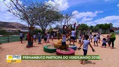 Projeto Verdejando incentiva o plantio e o cuidado com as plantas em quatro capitais - No Recife e em capitais como São Paulo, Brasília e Belo Horizonte, ações buscam conscientizar população sobre a importância de cuidar da natureza.
