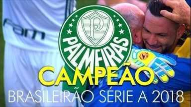 Palmeiras vence o Vasco e leva décimo título do Brasileirão - Palmeiras vence o Vasco e leva décimo título do Brasileirão