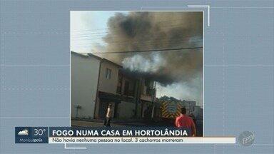Incêndio atinge residência em bairro de Hortolândia; 3 cachorros morreram - Casa que pegou fogo fica no Jardim Nova Europa. Os donos não estavam na residência durante o incêndio, que foi controlado pelos bombeiros.