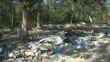 Área de proteção ambiental é alvo de degradação em São Luís - Descarte irregular de lixo, ocupação irregular e até especulação imobiliária são alguns dos flagrantes ocorridos na Reserva do Itapiracó, na capital.