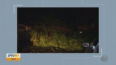 Chuva derruba árvores em rodovias e deixa estragos em São Lourenço, MG - Chuva derruba árvores em rodovias e deixa estragos em São Lourenço, MG