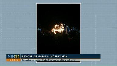 """""""Árvore dos desejos"""" é destruída pelo fogo, em Maringá - Para a prefeitura, a árvore foi alvo de vândalos."""