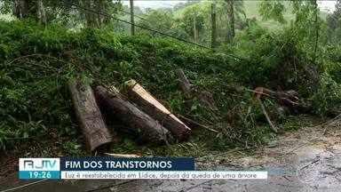 Fornecimento de energia é restabelecido após queda de árvore em Lídice, Rio Claro - Estrada da Itaóca chegou a ficar interditada.