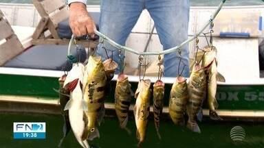 Pesca é um dos principais atrativos de turismo em Presidente Epitácio - Expectativa é que número de pessoas dobre em 2018 com relação a 2017.