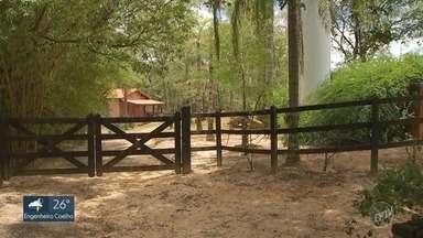 Jovem encontrado morto na lagoa de sítio é enterrado em Limeira - O rapaz de 19 anos participava de uma festa na virada do ano em uma chácara em Porto Feliz (SP).