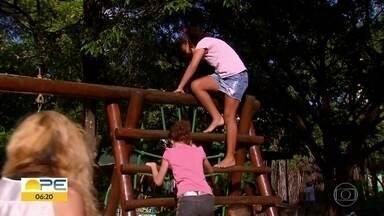 Parques são opções gratuitas para férias no Grande Recife - Em janeiro, é possível levar as crianças para brincar em diferentes pontos da Região Metropolitana