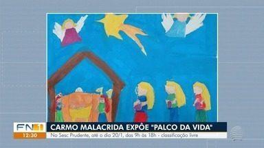 Confira as atrações da agenda cultural para esta sexta-feira - Artista plástica Carmo Malacrida faz exposição em Presidente Prudente.