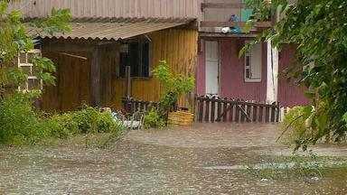 Temporal causa queda de árvore e mata homem em Alegrete - Chuva segue intensa na Fronteira Oeste do RS nesta quinta-feira (10).