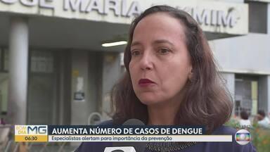 Quase 30 mil casos de dengue são registrados em MG em 2018 - Os cuidados contra o mosquito são os mesmos: não deixar água parada em recipientes como vasos, pneus velhos e vasilhas, lugares onde o Aedes aegypti se reproduz.