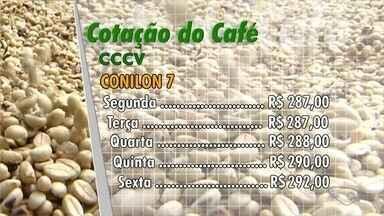 Confira a cotação do café no Espírito Santo - Saiba como o mercado se comportou durante a semana.