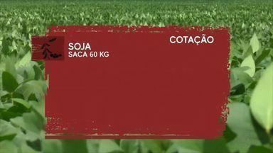 Veja os valores dos grãos na cotação agrícola - Preços são divulgados pela Emater/RO.