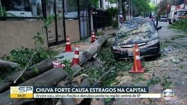 Chuva forte desta quinta-feira derrubou árvores e poste na capital - Na Rua Peixoto Gomide, árvore caiu em cima de um carro