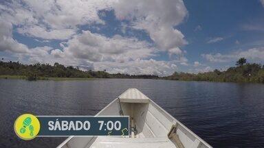Reveja do 'Partiu Amazônia' deste sábado (19) é viagem à Comunidade São Thomé - Reveja do 'Partiu Amazônia' deste sábado (19) é viagem à Comunidade São Thomé