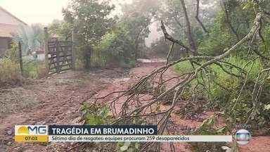 Sétimo dia de resgates em Brumadinho: 99 mortes confirmadas - Barragem da Vale se rompeu na sexta passada em Brumadinho, MG; lama destruiu refeitório e prédio da mineradora, pousada, casas e vegetação.