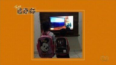 Telespectadores enviam fotos e vídeos para o Bom Dia Goiás - Veja.
