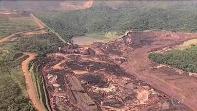 Ibama calcula destruição de 270 hectares de Mata Atlântica em Brumadinho - O Ibama calcula que o rompimento da barragem de Brumadinho tenha destruído pelo menos 270 hectares de Mata Atlântica. Especialistas da ONU cobraram uma investigação.