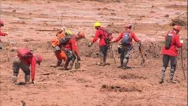 Boletim: 238 pessoas ainda estão desparecidas em Brumadinho - No sétimo dia de buscas, os Bombeiros dizem que as dificuldade aumentam porque a procura na superfície da lama já terminou.