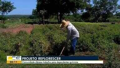 Projeto Reflorescer leva oportunidade a dependentes químicos em Barbalha, no Cariri - A ideia é reinserir essas pessoas no mercado de trabalho.