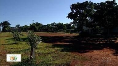 Projeto Viver Cidade tem primeiro evento neste sábado (2) - Evento irá mostrar como cultivar e fazer manutenção de árvores do Cerrado.