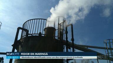 Abatedouro identificado como um dos responsáveis pelo mau cheiro em Maringá é multado - A multa é de R$ 50 mil por dia até que a empresa entregue toda documentação exigida pela prefeitura.
