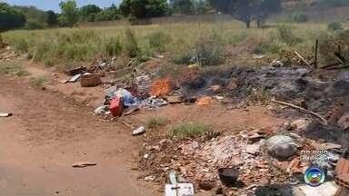 Em Araçatuba, 106 pessoas foram picadas por escorpião este ano - Em Araçatuba (SP), só do começo do ano até agora são 106 casos de pessoas picadas por escorpião.