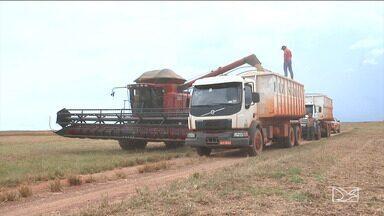 Lama e falta de manutenção das estradas atrasa viagens de caminhoneiros no MA - Caminhoneiros que transportam a safra de soja do sul do Maranhão para outros estados passam por sufoco.