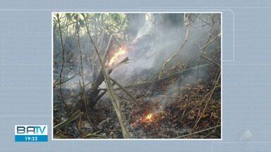 Incêndio em vegetação assusta moradores da zona rural de Amargosa - Bombeiros atuam no combate às chamas na região, mas ainda não sabe o que provocou o fogo.