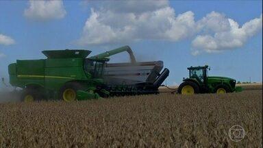 Estiagem causa perdas em lavouras de soja em MS - A colheita começou no estado e o que sai do campo está abaixo do previsto. Tem agricultor que esperava retirar 68 sacas por hectare mas está colhendo em torno de 50. A quebra na produção chega a 6%.