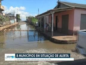 Altos níveis da cheia no Rio Madeira ameaçam plantações de comunidades no Amazonas - Segundo a Defesa Civil, oito municípios estão em estado de alerta e outros 16 de atenção.