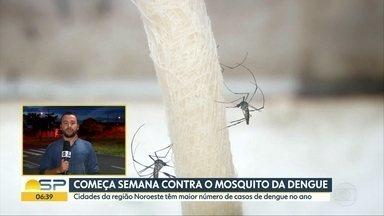 Governo do Estado inicia semana de mobilização contra a dengue - Em São José do Rio Preto já são 453 só este ano.