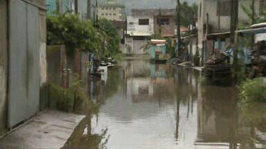 Chuva provoca alagamentos em Ubatuba - Estufa 1, bairros da região central e costa norte foram mais afetadas.