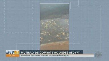 Moradores denunciam criadouros de Aedes aegypti no Ipiranga em Ribeirão Preto - Prefeitura enviará equipe para realizar a limpeza de bueiros entupidos.