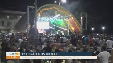 Festa abre oficialmente o 'Carnailha 2019', em Parintins - Cidade recebe feirão dos blocos