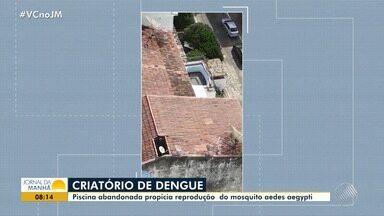 Dengue: piscina abandonada preocupa moradores do Garcia, em Salvador - A piscina é propicia para a reprodução do mosquito Aedes aegypti.