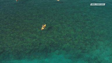 Surfe E Diversão Em Maui