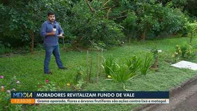 Moradores revitalizam fundo de vale no Jardim Pinheiros III - Eles plantaram grama, flores e árvores frutíferas.