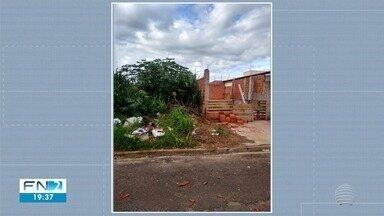 Moradores de Presidente Prudente reclamam de terrenos sujos - Prefeitura já emitiu 143 multas por falta de limpeza nos locais neste ano.
