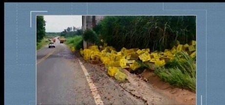 Caminhão carregado de cerveja tomba na BR-494 próximo a Oliveira - Lona do veículo arrebentou e metade da carga caiu na pista. Trânsito está complicado no trecho que liga Oliveira a Carmo da Mata.