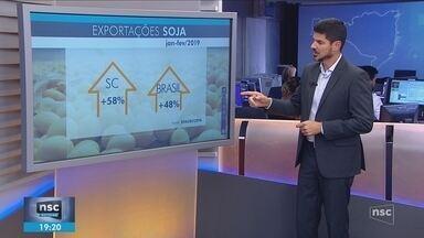Nos dois primeiros meses de 2019, SC registra aumento de 58% na exportação de soja - Nos dois primeiros meses de 2019, SC registra aumento de 58% na exportação de soja