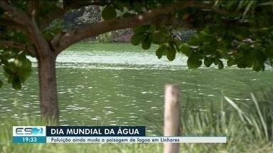 Lagoa do Meio recebe lixo e esgoto de pelo menos seis bairros de Linhares, ES - Essa é a maior lagoa urbana da cidade.