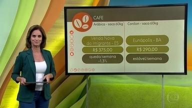 Veja o preço do café e a cotação do boi - A saca do café arábica em Venda Nova do Imigrante (ES) fechou a semana em R$ 375,00; queda de 1,5%