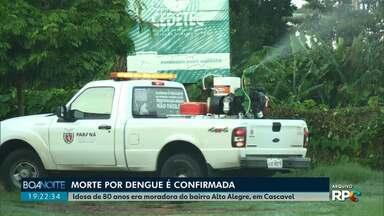 Primeira morte provocada por dengue é confirmada em Cascavel - Idosa de 80 anos era moradora do bairro Alto Alegre.