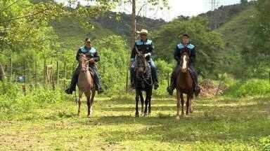 """Tropeiros da Zona da Mata vão participar de cavalgada até o Sul do Brasil - Comitiva """"Tropeiros da Geraes"""" é formada por 25 cavaleiros mineiros, que vão viajar de Juiz de Fora até o Rio Grande do Sul. O objetivo é explorar o turismo e conhecer a cultura e a gastronomia do povo gaúcho."""