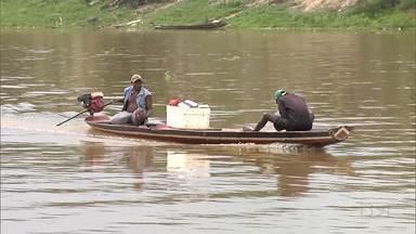 Fim da piracema faz voltar a pesca na bacia do rio Pindaré - Pesca de espécies nativas estava interrompida desde 1º de dezembro de 2018, mas agora está liberada na região.