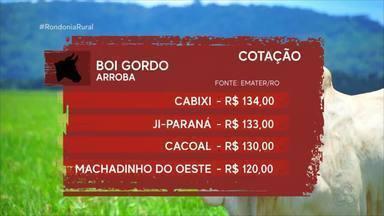 Veja os valores da cotação agrícola - Preços são computados pela Emater/RO.
