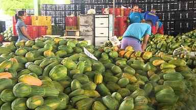 Mudanças climáticas têm afetado preços de produtos na Central de Abastecimento de Sergipe - Enquanto verduras ficam mais caras, têm fruta em baixa.