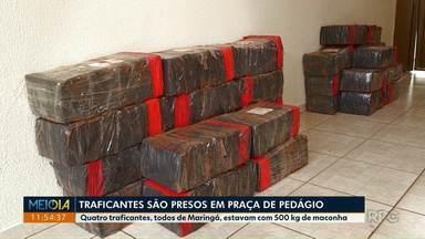 Denarc de Maringá prende traficantes em praça de pedágio - Quatro traficantes, todos de Maringá, estavam com 500 kg de maconha.