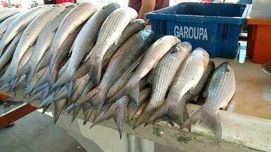 Feira do Peixe vai reunir 50 bancas em Rio Grande - Secretário municipal da Pesca, Cláudio Costa, fala sobre expectativa de vendas e dificuldades enfrentadas neste ano pelos pescadores.